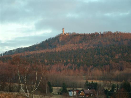 hochwald07.jpg