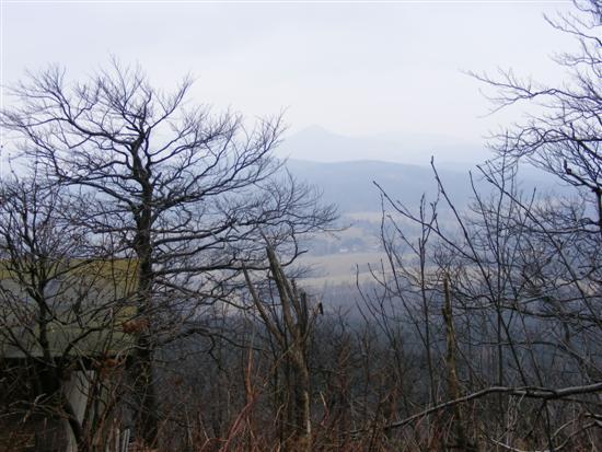 hochwald13.jpg