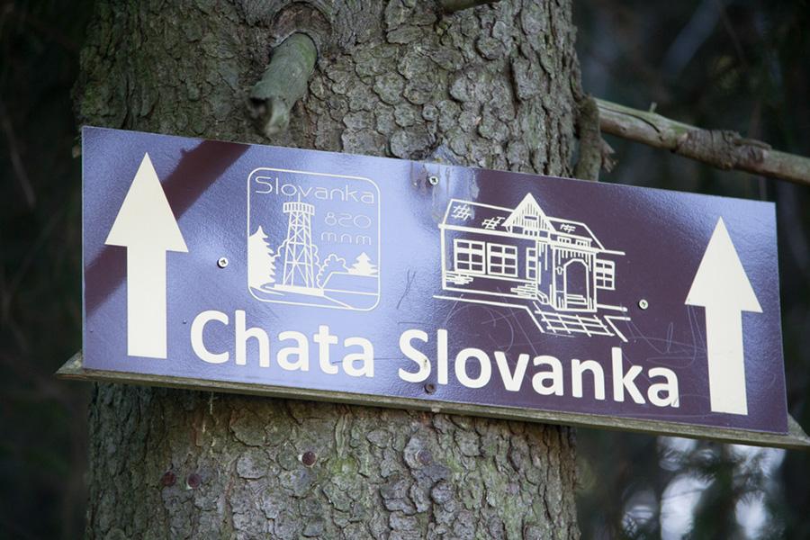 slovan_01.jpg